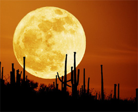 'Supermoon' will occur on Saturday night all over the World; no need of fear about Natural Disasters due to 'Supermoon'
