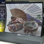 Sony introduces flexible Color E-paper and new Glasses-free 3D LCD Displays at SID 2011