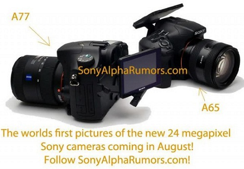 Sony A77, A65 DSLRs release date soon Price and Specs leaked
