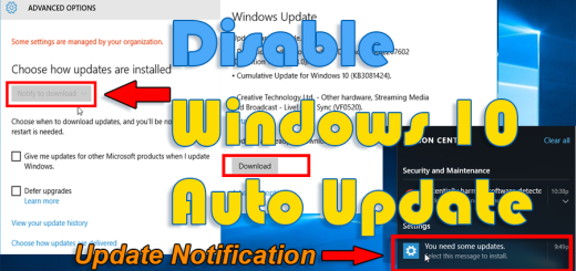 Disable Windows 10 auto update