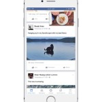 Facebook new feature video feed
